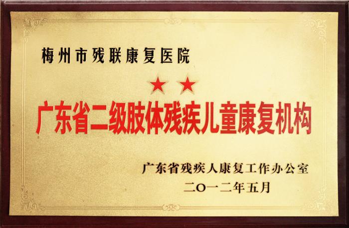 广东省二级肢体残疾儿童康复机构